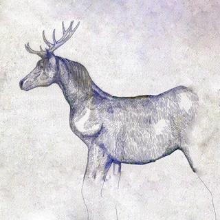歌詞 馬と鹿